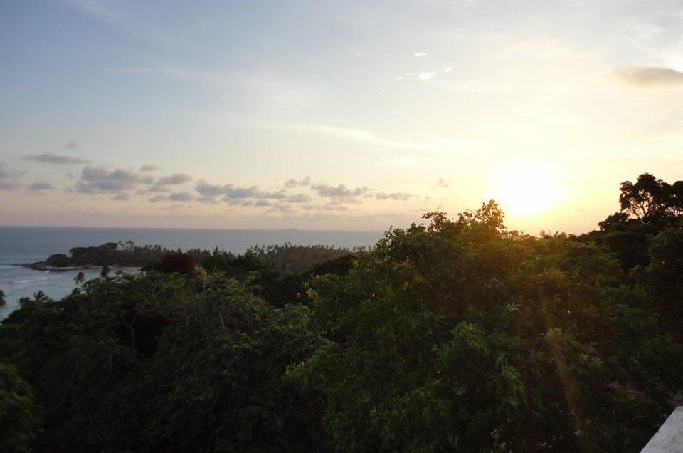 Индивидуальное путешествие на Шри-Ланку